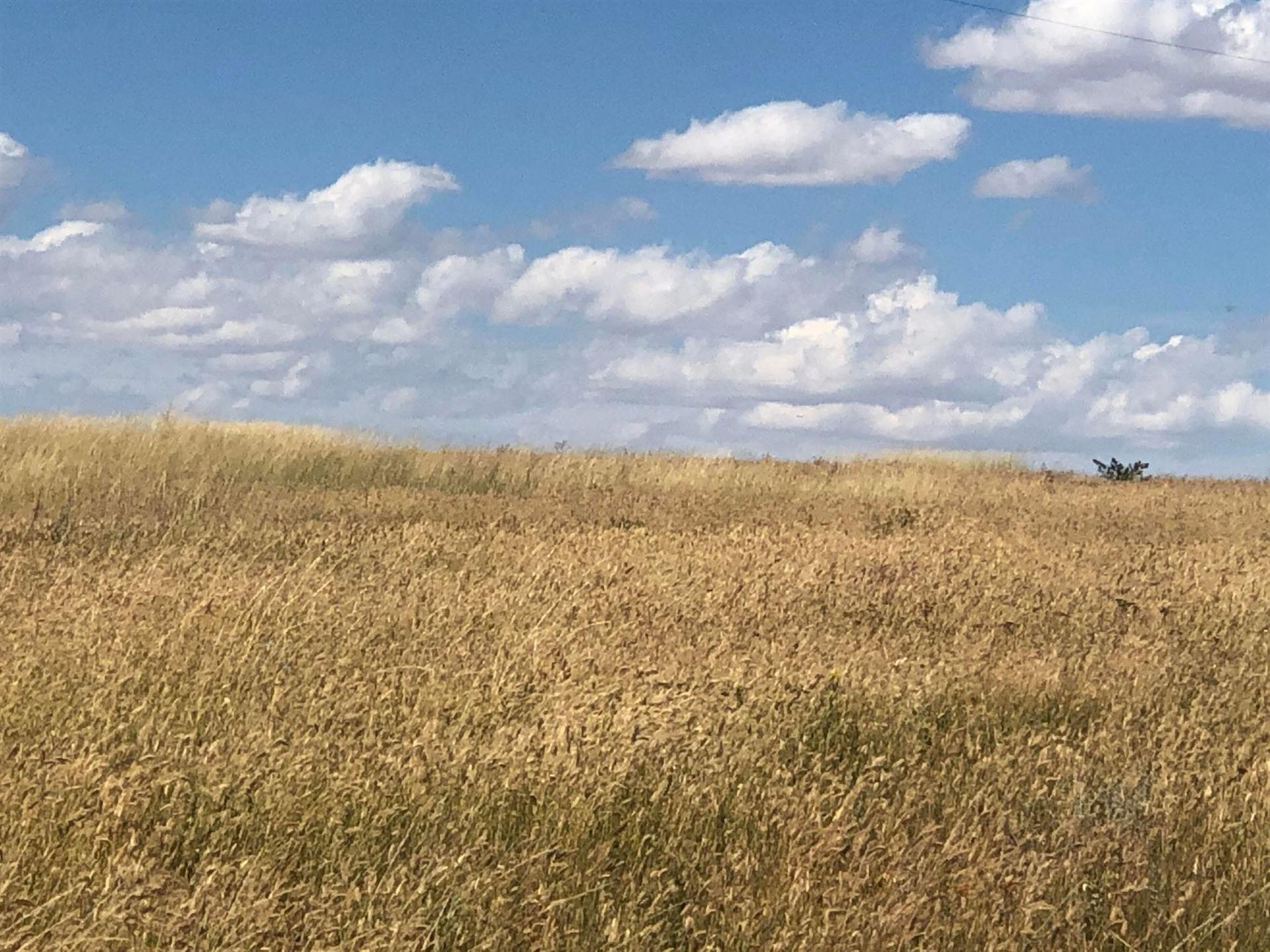 Photo of 194 Thorsen Road, Belt, MT 59412 (MLS # 22017176)