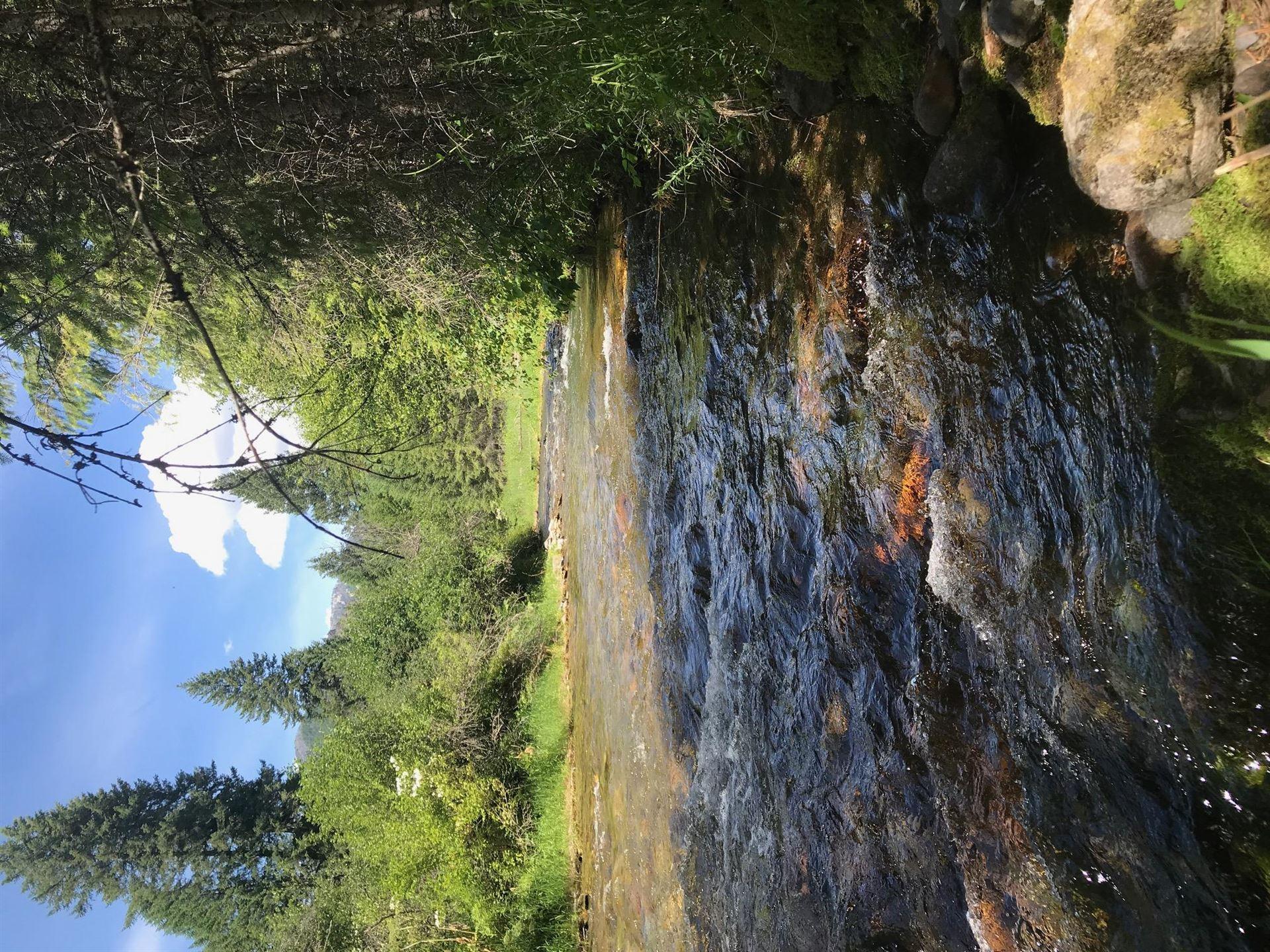 Photo of Nhn Blue Slide Road, Thompson Falls, MT 59873 (MLS # 22010193)