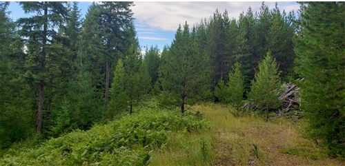 Photo of Lot 6a Porcupine Subdivision, Troy, MT 59935 (MLS # 22115200)