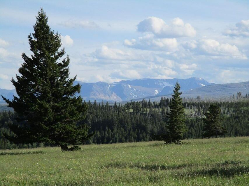 Photo for Nhn Livermore Road, Babb, MT 59411 (MLS # 22115231)
