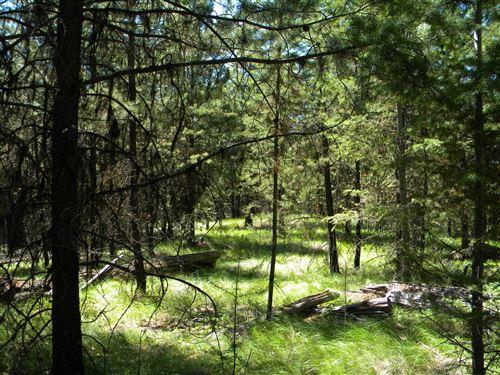 Photo of Nka Lower Lost Prairie Road, Marion, MT 59925 (MLS # 21812249)