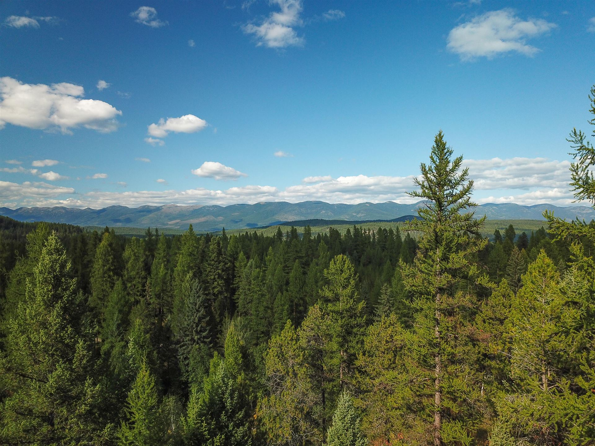 Photo for Nhn Cliff Creek Road, Whitefish, MT 59937 (MLS # 22114263)