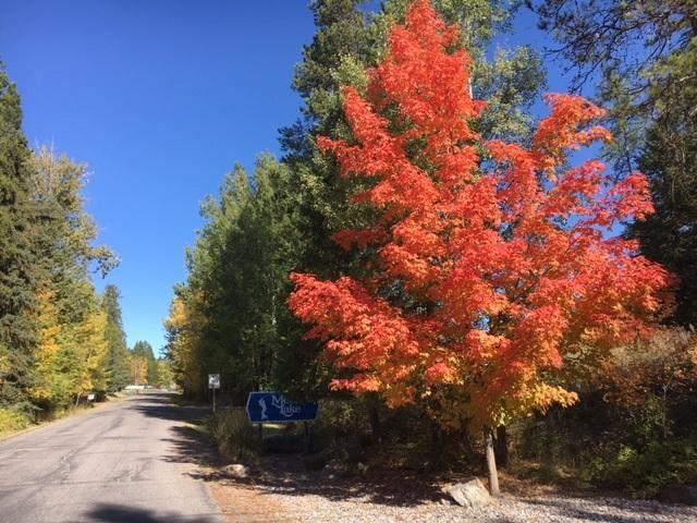 Photo of 1033 St. Andrews Drive, Columbia Falls, MT 59912 (MLS # 22103327)