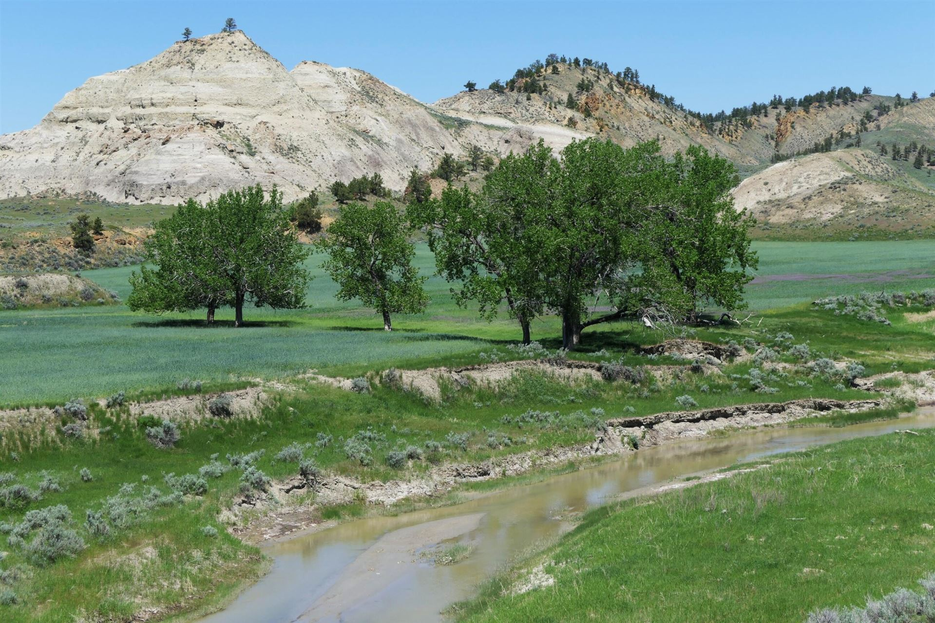 Photo of 43 Zy Brown Ranch Road, Big Sandy, MT 59520 (MLS # 22110332)