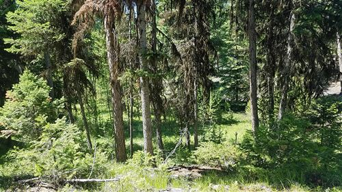 Tiny photo for Nhn Loch Lane, Marion, MT 59925 (MLS # 22105338)
