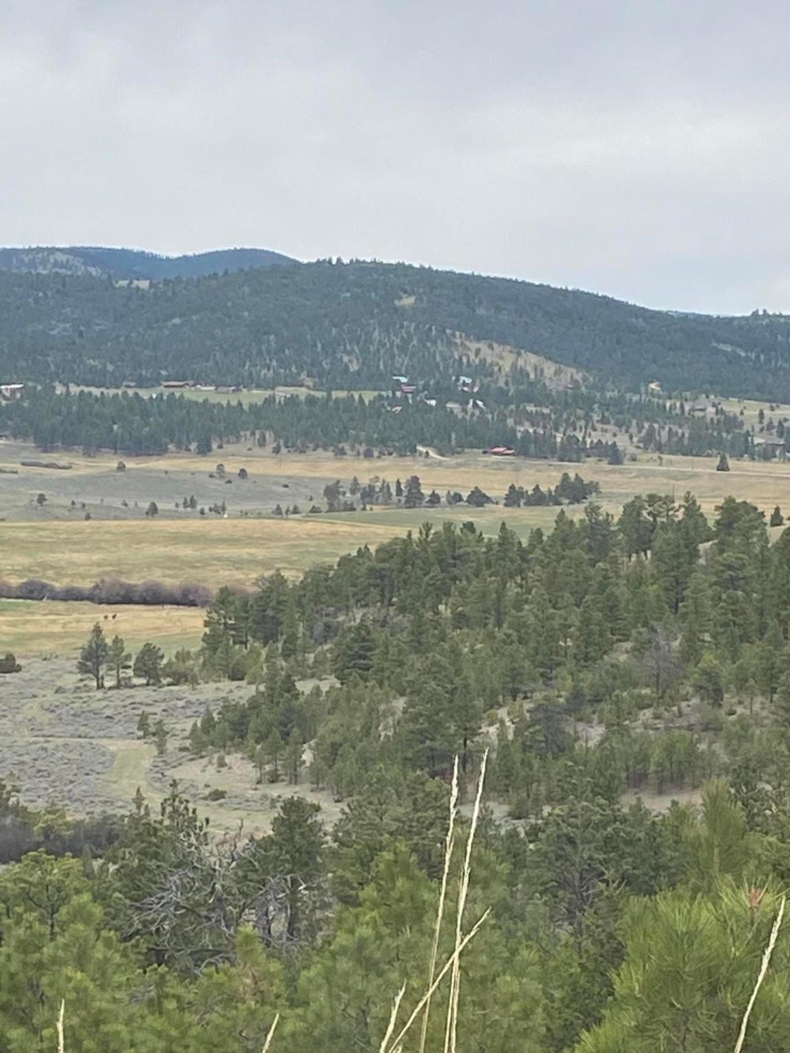 Photo for Tbd Shangrila, Helena, MT 59602 (MLS # 22002371)