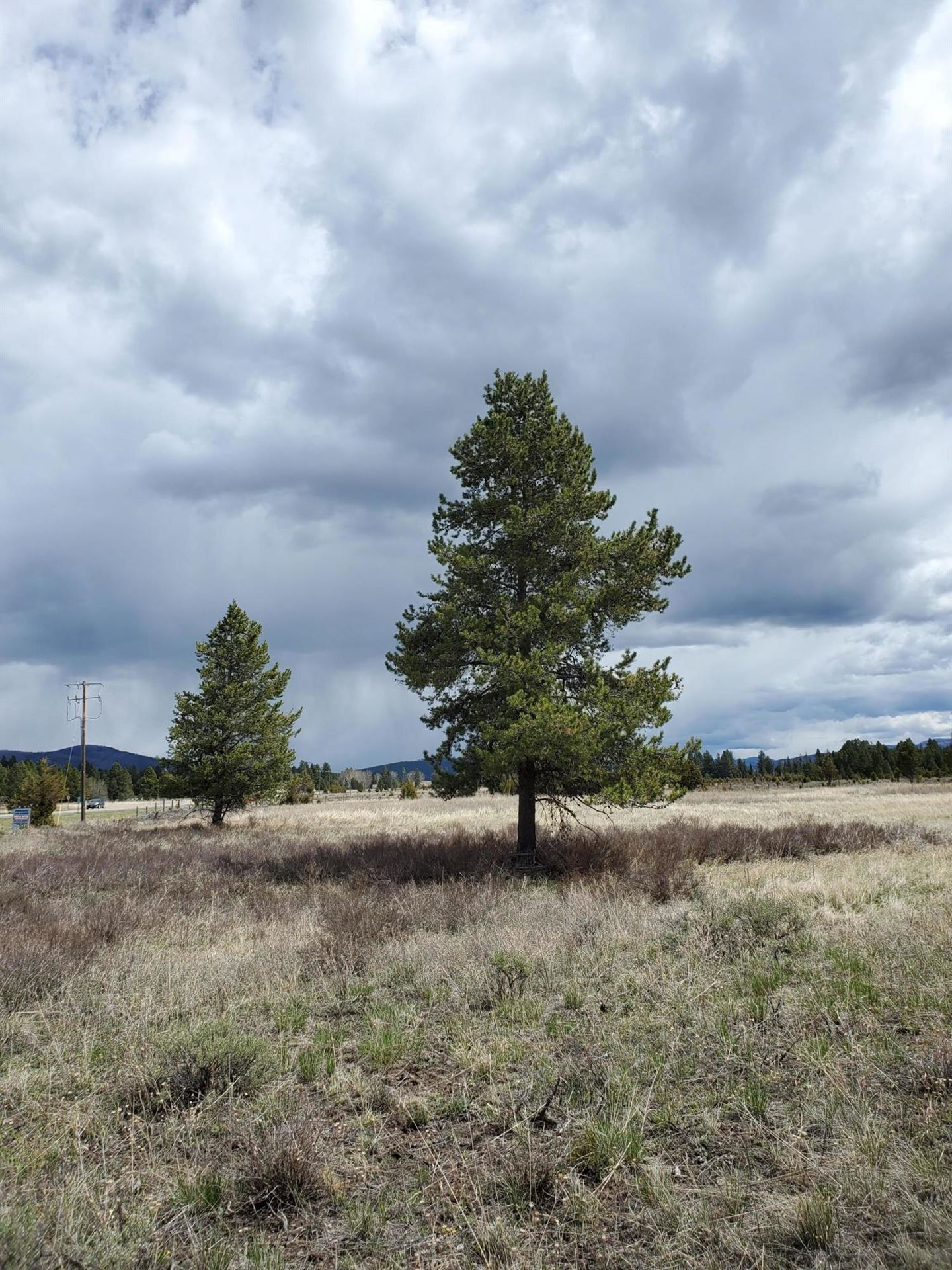 Photo of Lincoln, MT 59639 (MLS # 22102385)