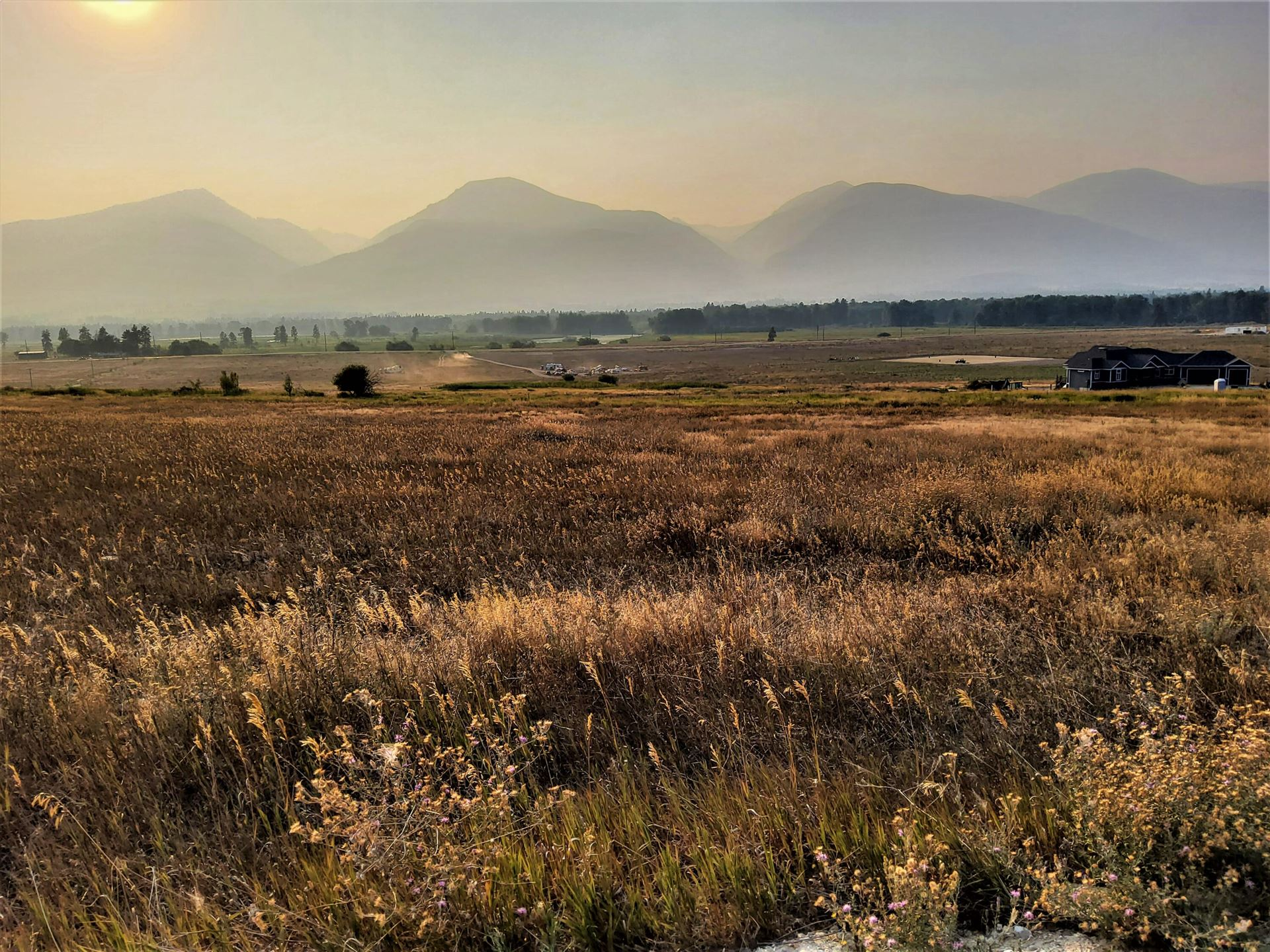 Photo of Nhn Cameron Rose Lane, Stevensville, MT 59870 (MLS # 22114386)