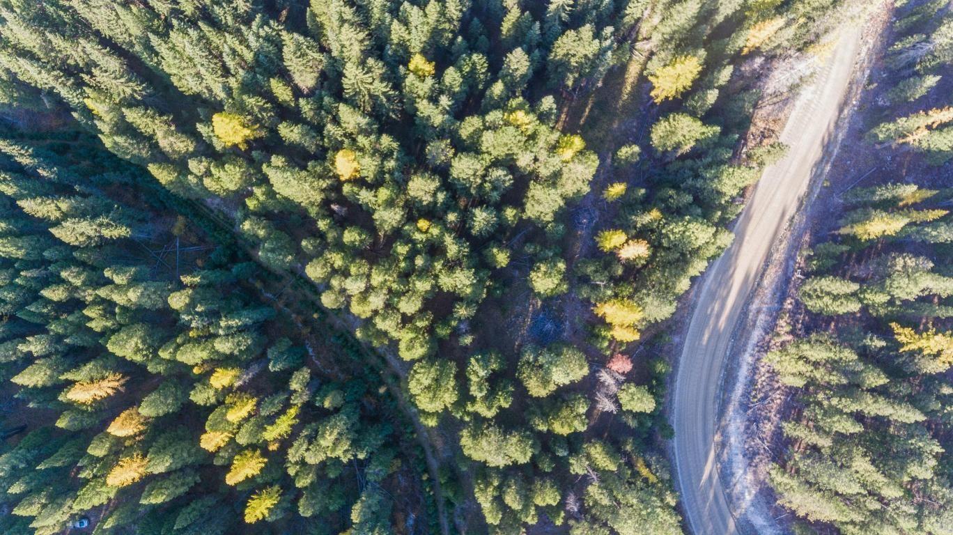 Photo of 1340 Coon Hollow Road, Kila, MT 59920 (MLS # 22116446)