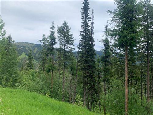 Photo of 107 Ridge Run Drive, Whitefish, MT 59937 (MLS # 22109450)