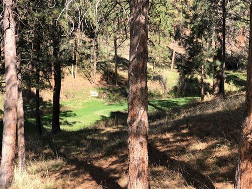 Photo of 1256 Sheep Creek Road, Stevensville, MT 59870 (MLS # 22018453)
