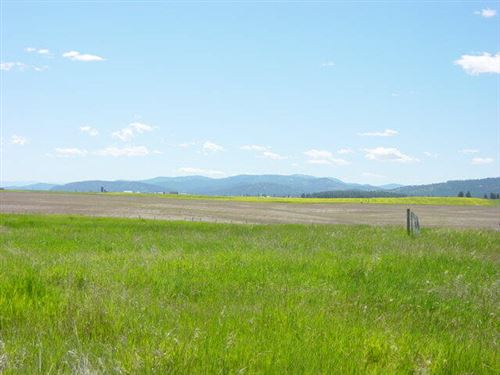 Photo of 590 Dusty Acres Lane, Kalispell, MT 59901 (MLS # 22109457)