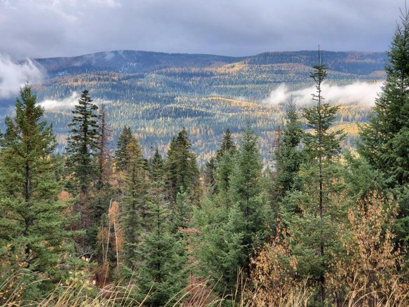 Photo for 15500 Rustic Ridge, Bigfork, MT 59911 (MLS # 22114462)