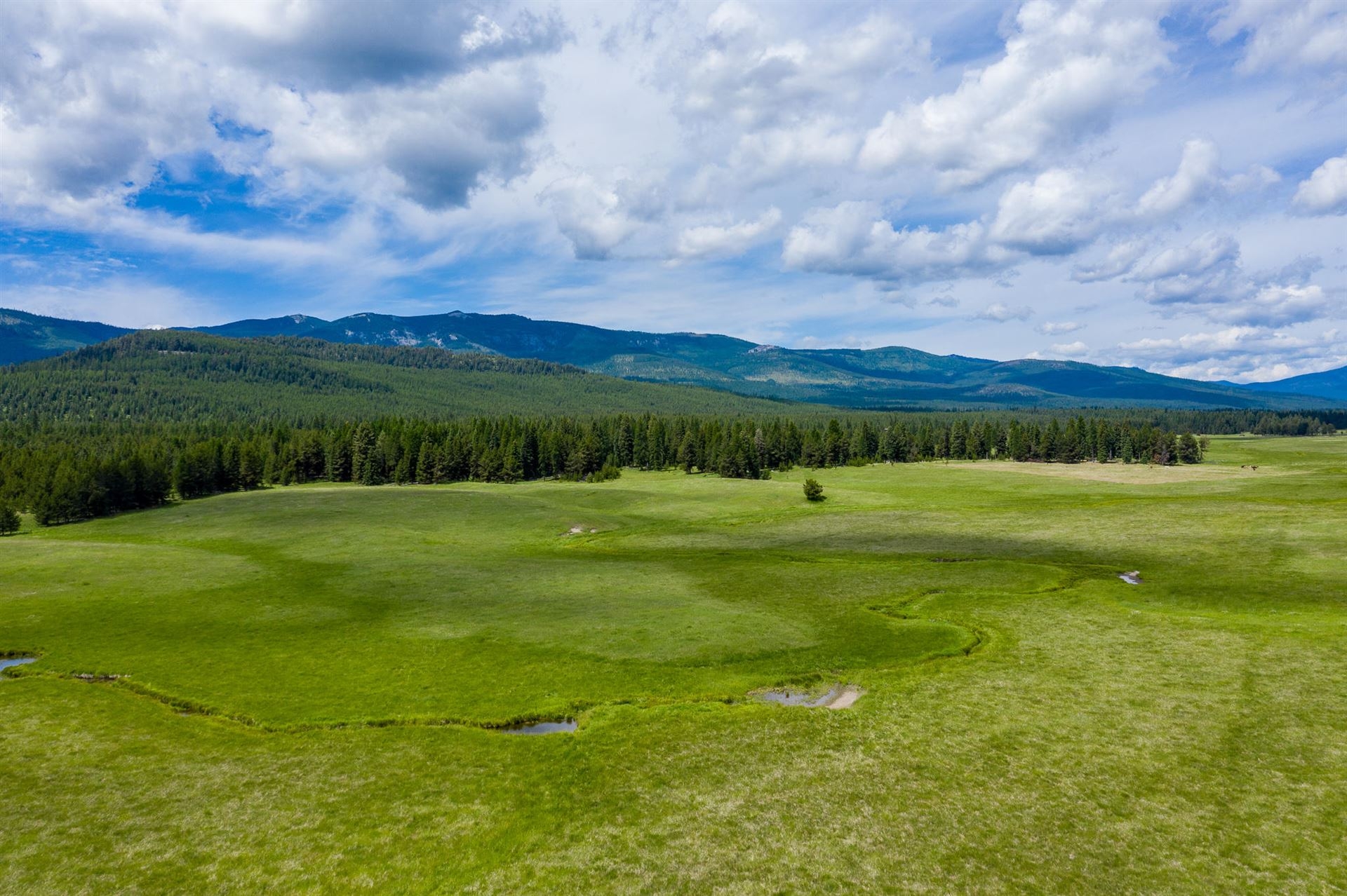 Photo for 9501 Lost Prairie Road, Marion, MT 59925 (MLS # 22106491)