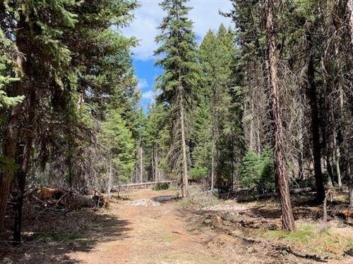Photo of 676 Sourdough Lane, Seeley Lake, MT 59868 (MLS # 22010495)