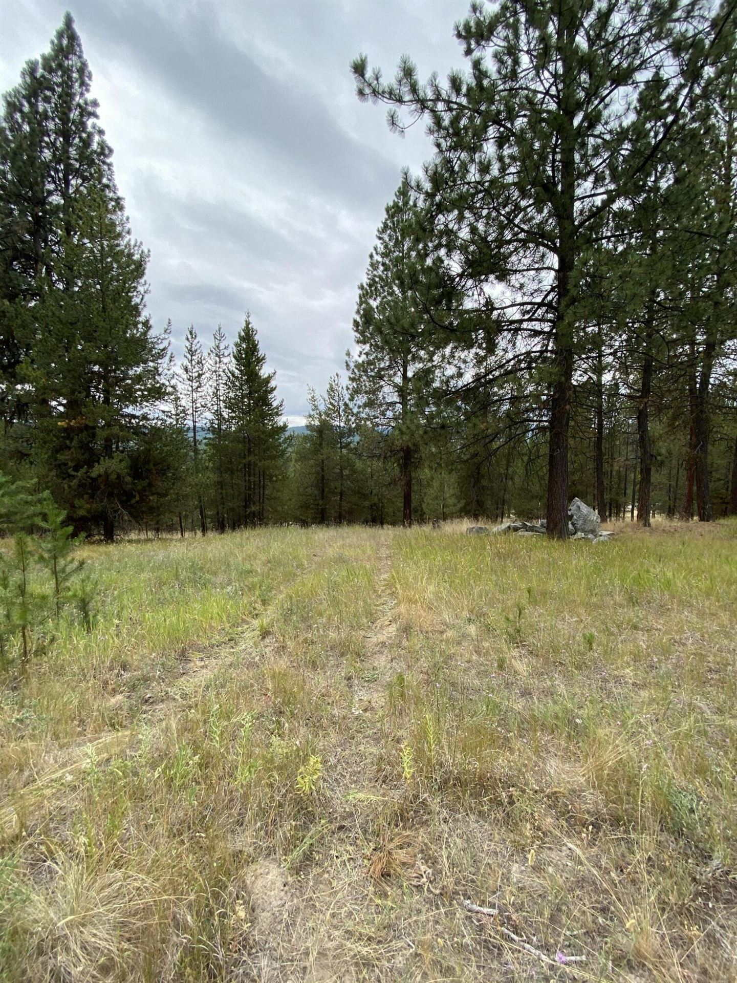 Photo for 3026 Lower Lost Prairie Road, Marion, MT 59925 (MLS # 22111505)