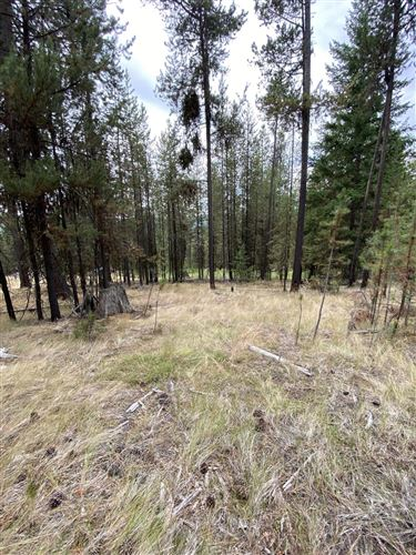 Tiny photo for 3034 Lower Lost Prairie Road, Marion, MT 59925 (MLS # 22111507)