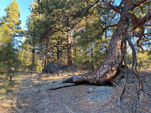 Photo of 19 Lookout Lane, Cascade, MT 59421 (MLS # 22100522)