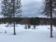 Photo of 124 Spyglass Hill Loop, Columbia Falls, MT 59912 (MLS # 22003550)