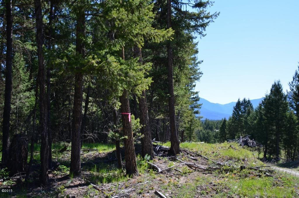 Photo of Nhn Knoll Ridge Drive, Eureka, MT 59917 (MLS # 22015690)