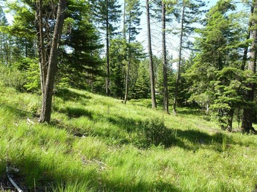 Photo of 279 Hidden Hills Lane, Whitefish, MT 59937 (MLS # 22106699)