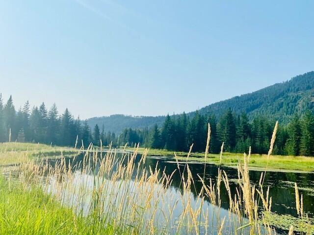 Photo of 91 Elk Meadow Lane, Heron, MT 59844 (MLS # 22111716)