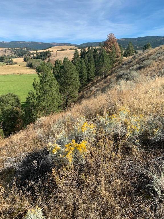 Photo of 0000 Bolin Ranch Road, Stevensville, MT 59870 (MLS # 22015718)