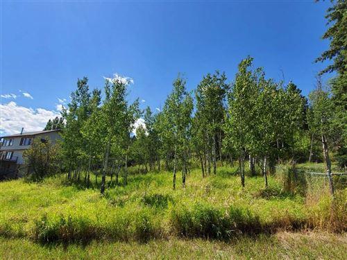 Photo of 316 Lake Hills Drive, Bigfork, MT 59911 (MLS # 22012774)