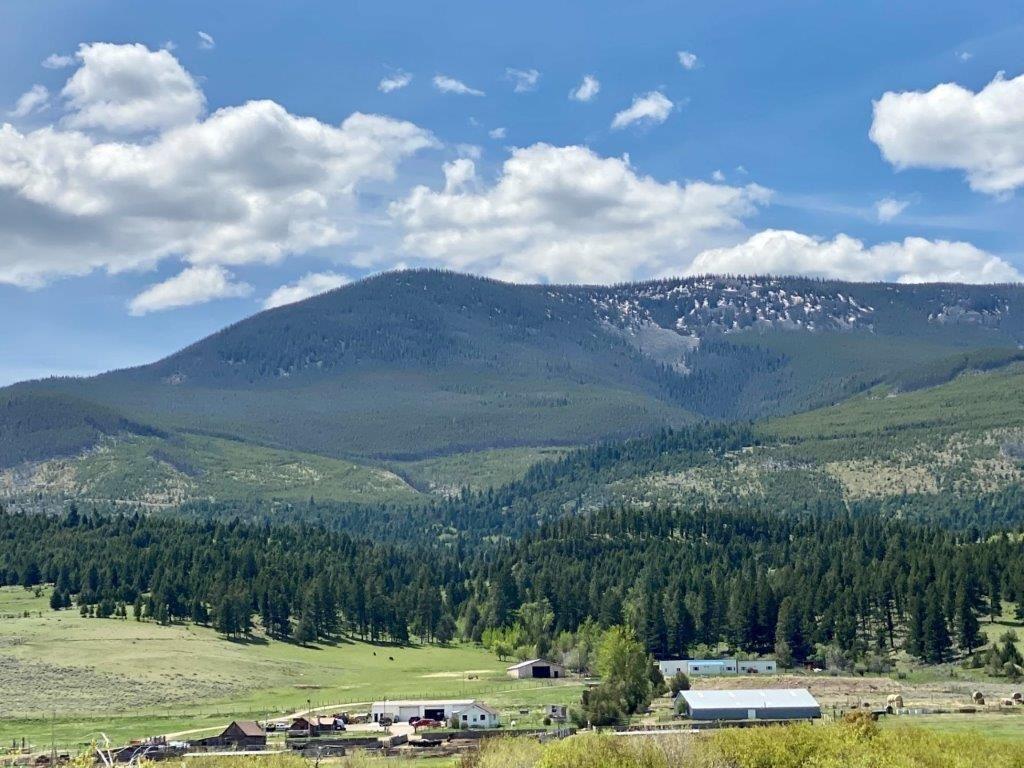 Photo of 1270 Nevada Creek Ranch Drive, Helmville, MT 59843 (MLS # 22008803)