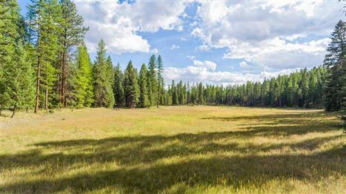 Photo of 63 Whitefish Ranch Court, Whitefish, MT 59937 (MLS # 22115823)