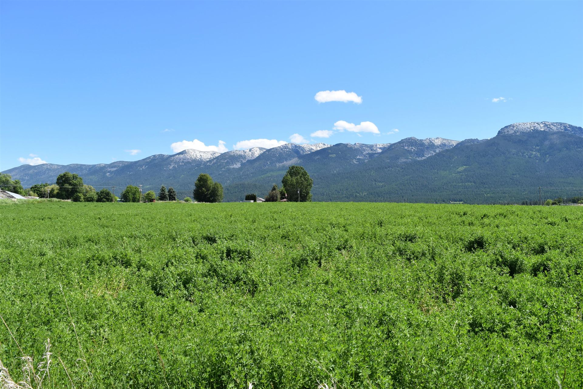 Photo of Tract B Lacey Lane, Polson, MT 59860 (MLS # 22108855)