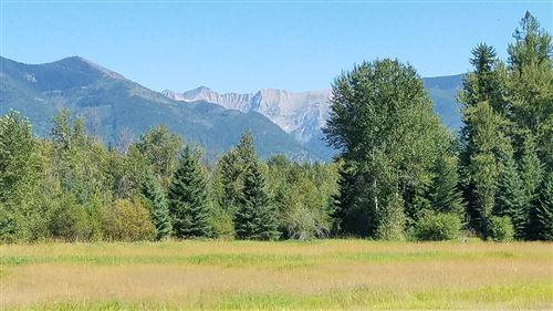 Photo of 32576 Shay Lake Road, Bigfork, MT 59911 (MLS # 22013895)