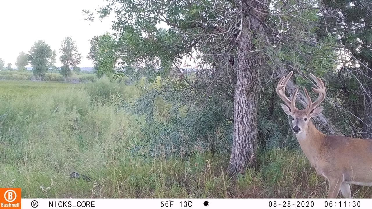 Photo of Nhn County Road 355, Fairview, MT 59221 (MLS # 22013946)