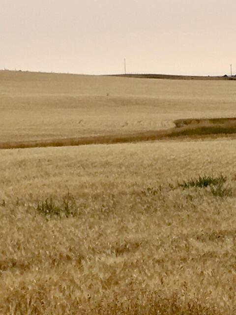 Photo of Tbd Lakeside Road, Valier, MT 59486 (MLS # 22115951)