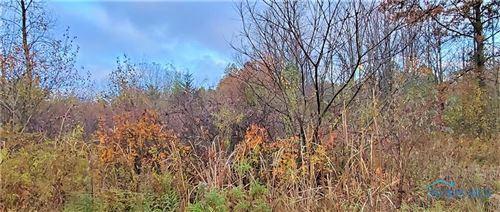Photo of 1684 S Berkey Southern Road, Swanton, OH 43558 (MLS # 6061964)