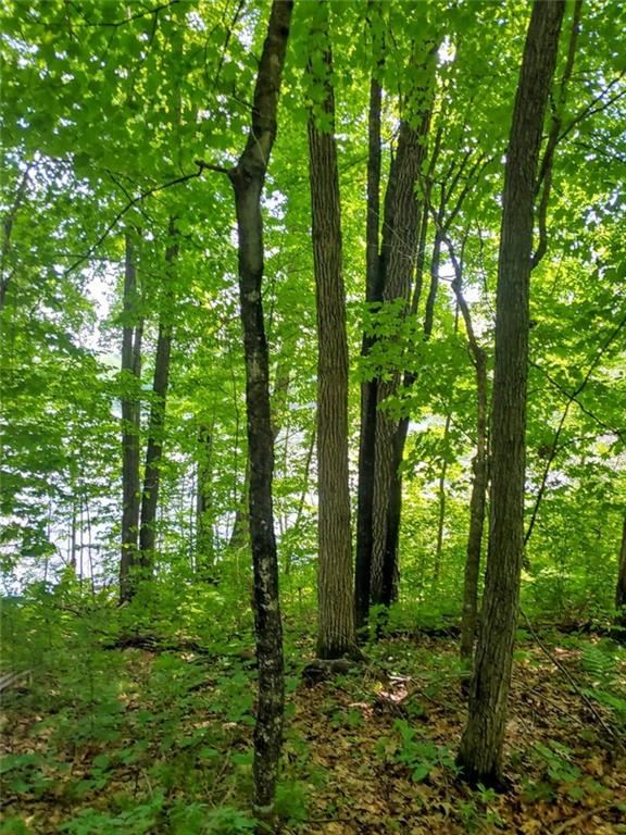 Photo of N2464 Shore Line Road, Birchwood, WI 54817 (MLS # 1544066)