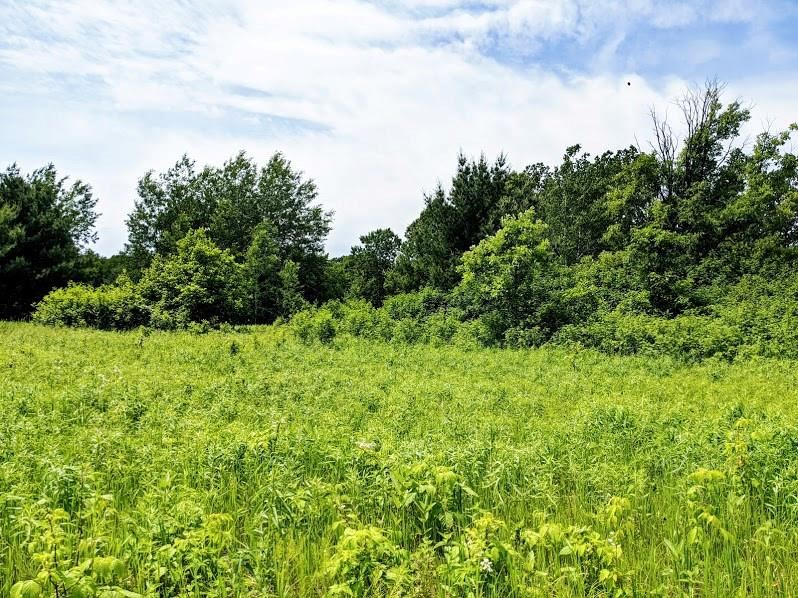 Photo of 0 292nd Street, Holcombe, WI 54745 (MLS # 1543166)