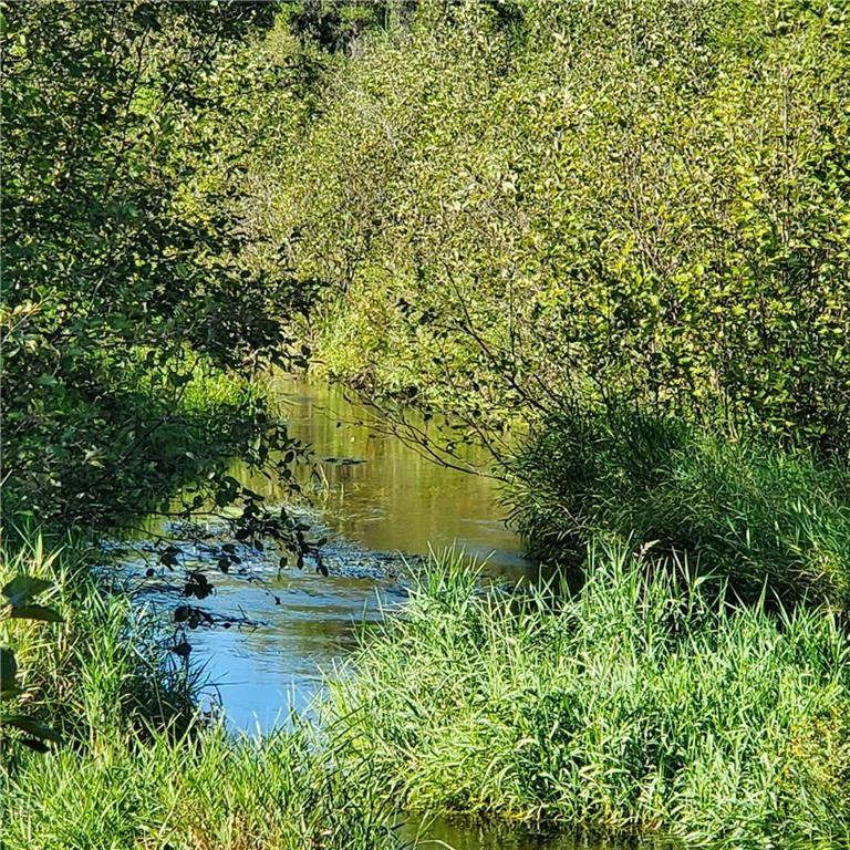 Photo of 0 Shell Creek Road, Minong, WI 54859 (MLS # 1547240)