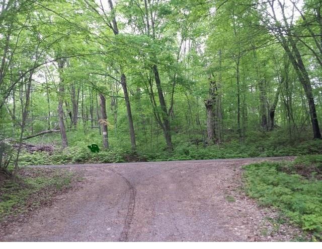 Photo of 0 Wolf Island Road, Hayward, WI 54843 (MLS # 1547297)