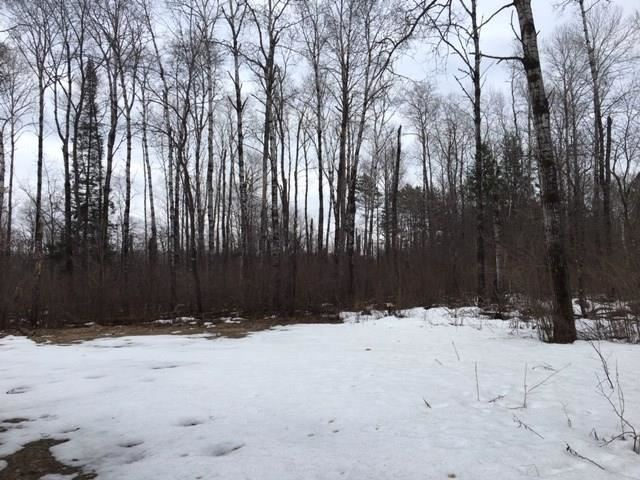 Photo of 42XXX Chestnut Court, Cable, WI 54821 (MLS # 1540860)