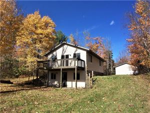 Photo of 6081 County Road X, Webster, WI 54893 (MLS # 1536927)