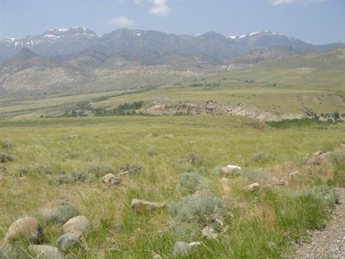 Photo of 0 Grizzly Ln, Cody, WY 82414 (MLS # 10013379)