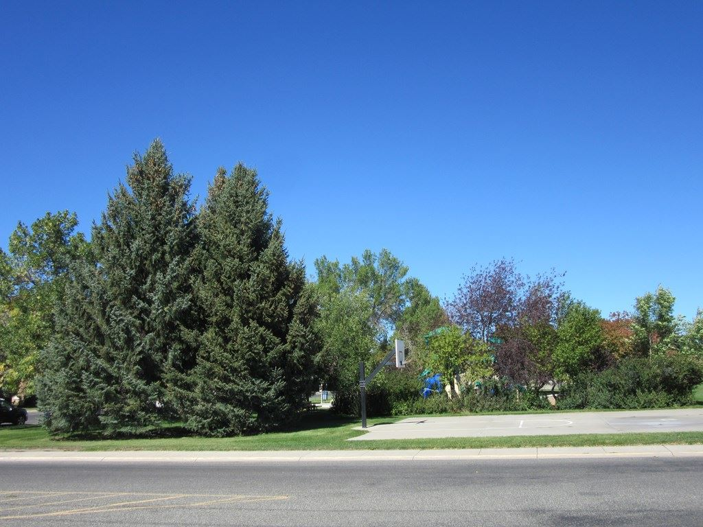 Photo of 1907 16th St, Cody, WY 82414 (MLS # 10017380)