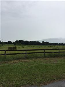 Photo of 0 SE 73rd Avenue, Summerfield, FL 34491 (MLS # 560019)