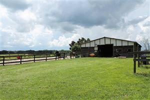 Photo of 5850 SE 212th Court, Morriston, FL 32668 (MLS # 552020)