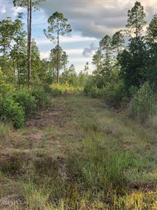 Photo of 0 NE NE 212th St. Road, Fort McCoy, FL 32134 (MLS # 563052)