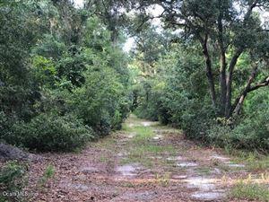 Photo of 0 NE 212 St Rd, Fort McCoy, FL 32134 (MLS # 563061)