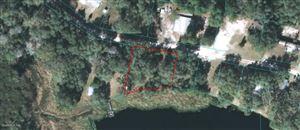 Photo of 0 NE 207th Lane, Fort McCoy, FL 32134 (MLS # 563062)