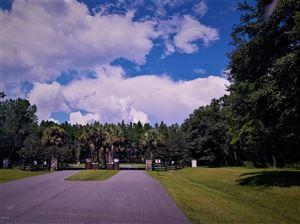 Photo of 0 NW 141 Avenue, Williston, FL 32696 (MLS # 547065)