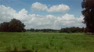 Photo of 9119 NW Highway 320 Micanopy/MacIntosh, Ocala, FL 34471 (MLS # 534066)